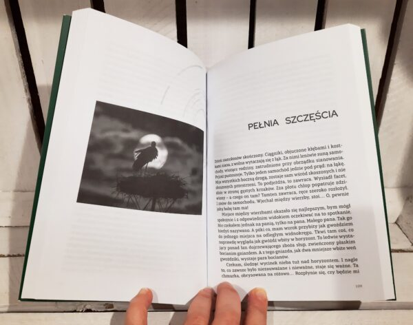 Sklep SLJEDZIK -- Książka Pojedynek z ptakami